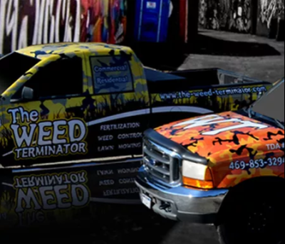 Reasons to Get Custom Vehicle Wraps